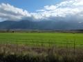 La plaine avant la monte