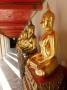 rangee de buddha